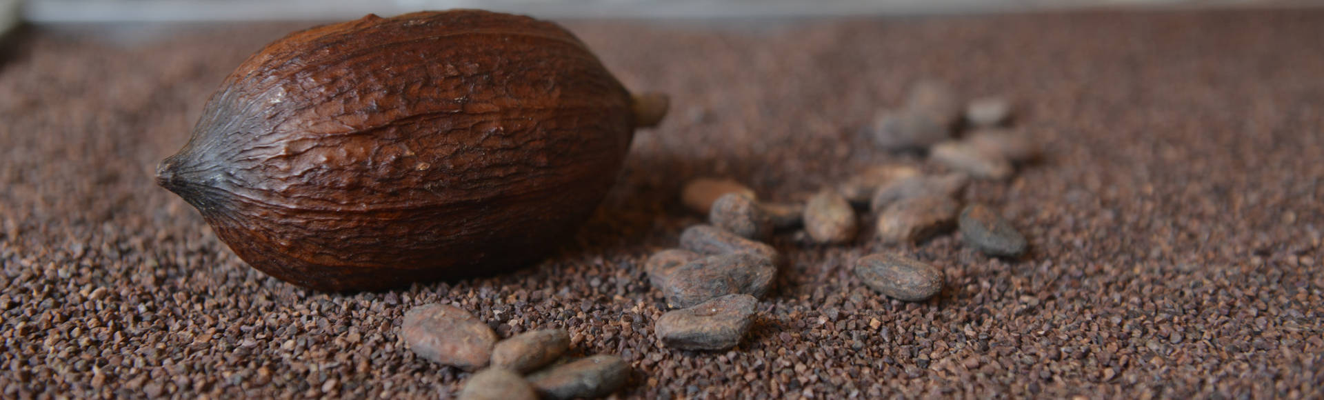 tristan-chocolatier-banniere3
