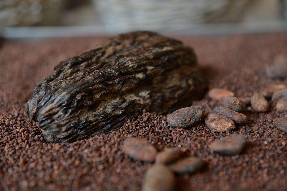 Fèves Tristan Chocolatier Bougy Villars